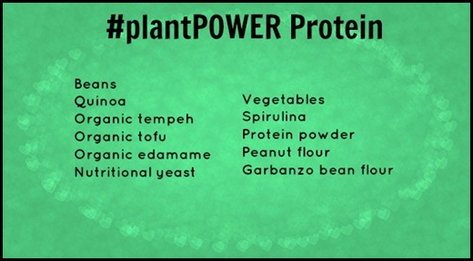 plantPOWERprotein