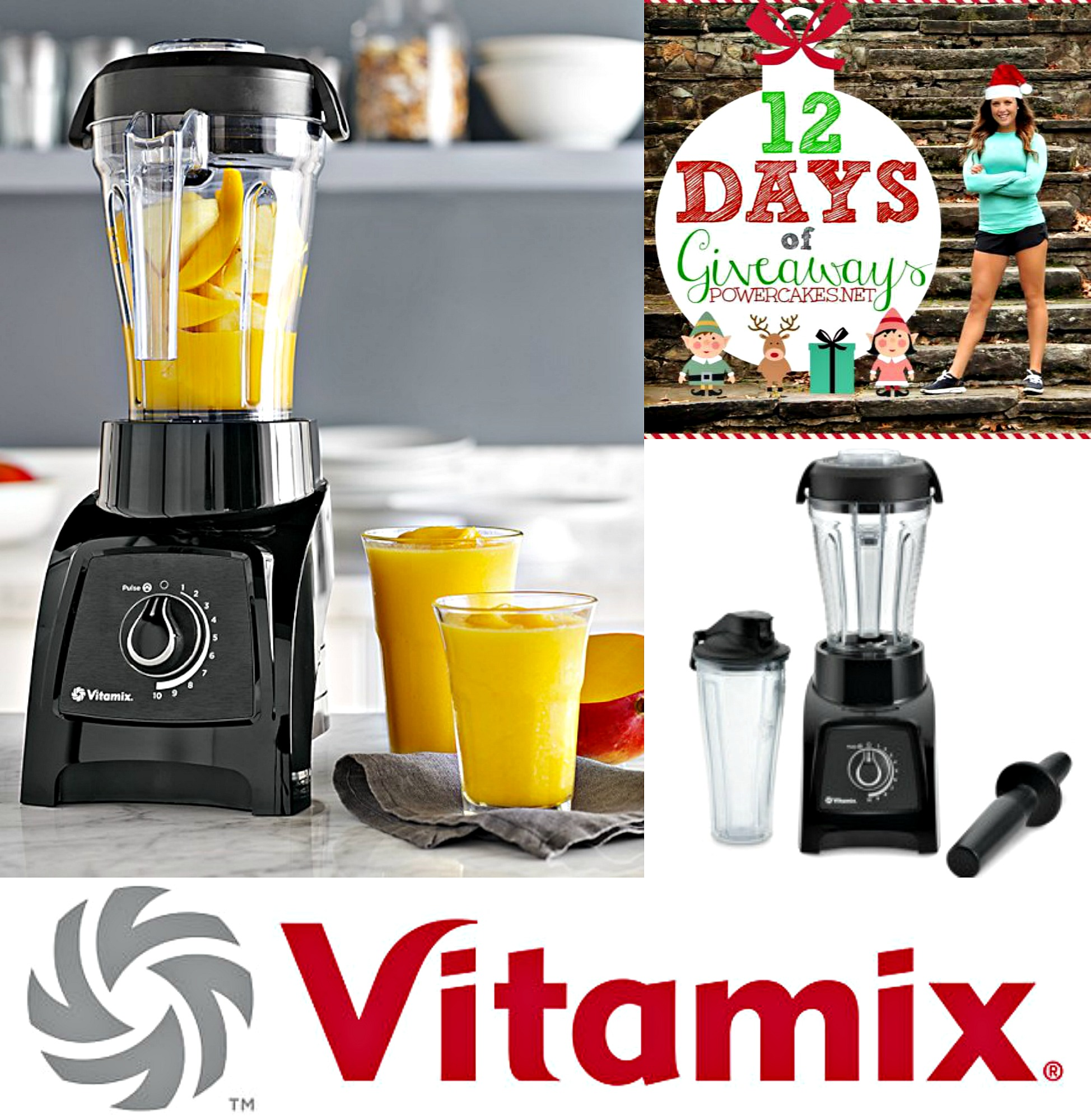 vitamix 12 days